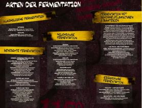Fermentation_06